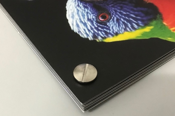 Our previous screw bound binding work.